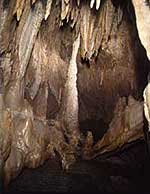 Iwaizumi Caves and Bats